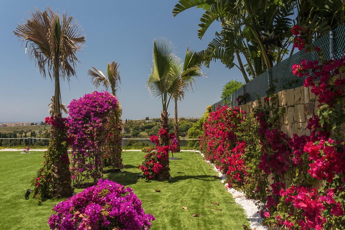 25-garden-area