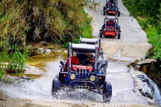 Activities in Marbella buggies