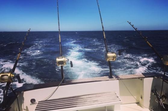 Activities in Marbella fishing
