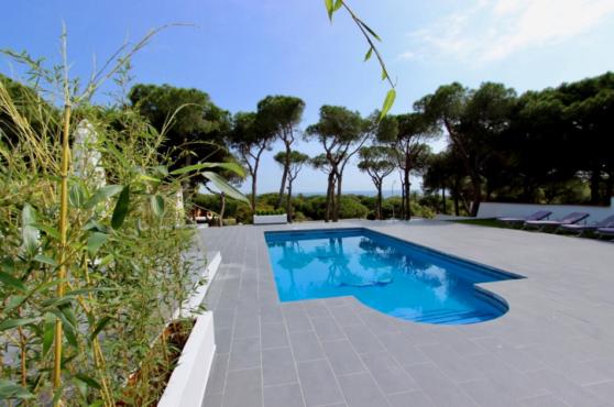 Villa Domino Elviria pool 2