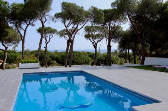Villa Domino Elviria pool