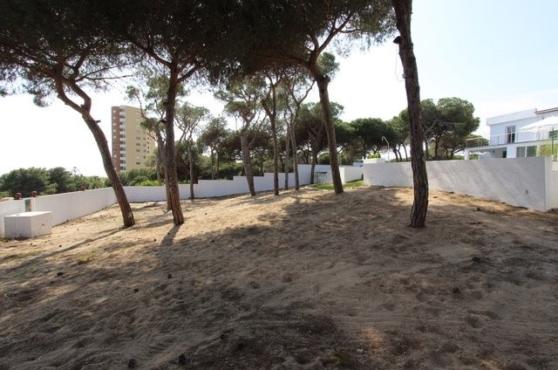 villa domino Elviria garden